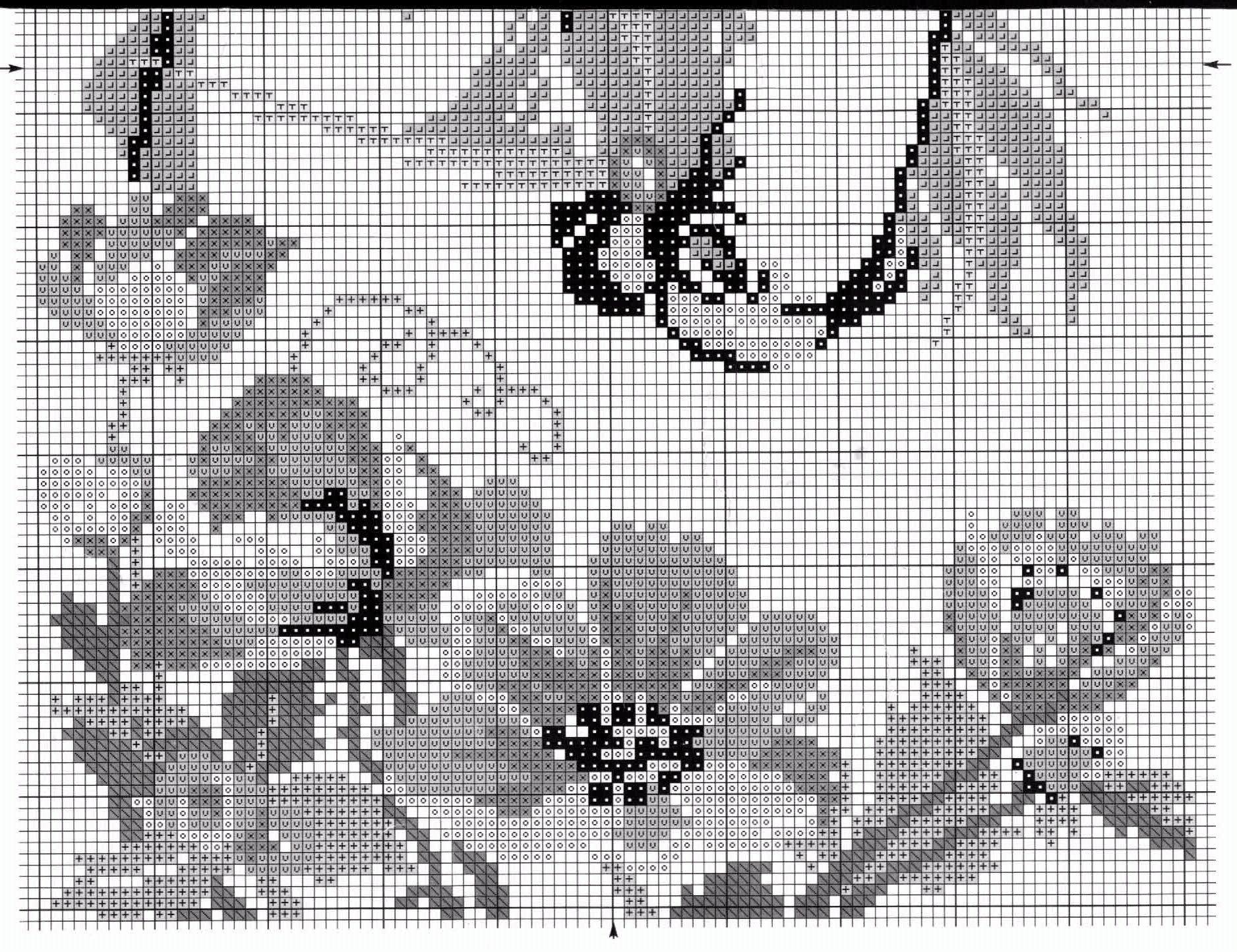 Схемы для вышивки крестом фото черно белые